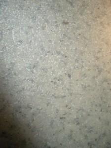 hol-bloc-2-1-225x300 SMART
